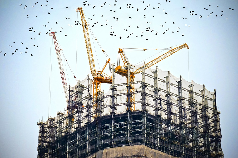 Cranes on top of tower being built | Featured image for How to get your Builders License.